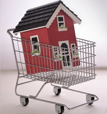 house in shopping cart - no property release
