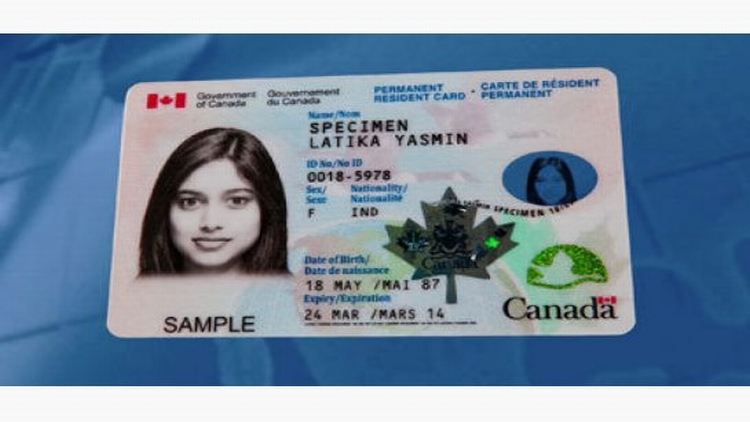 Expired-Maple-Leaf-Card