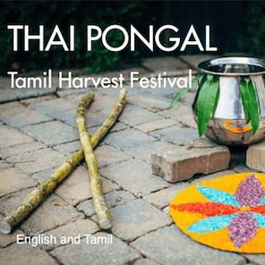 thai-pongal_grande